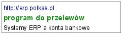 program do przelewów